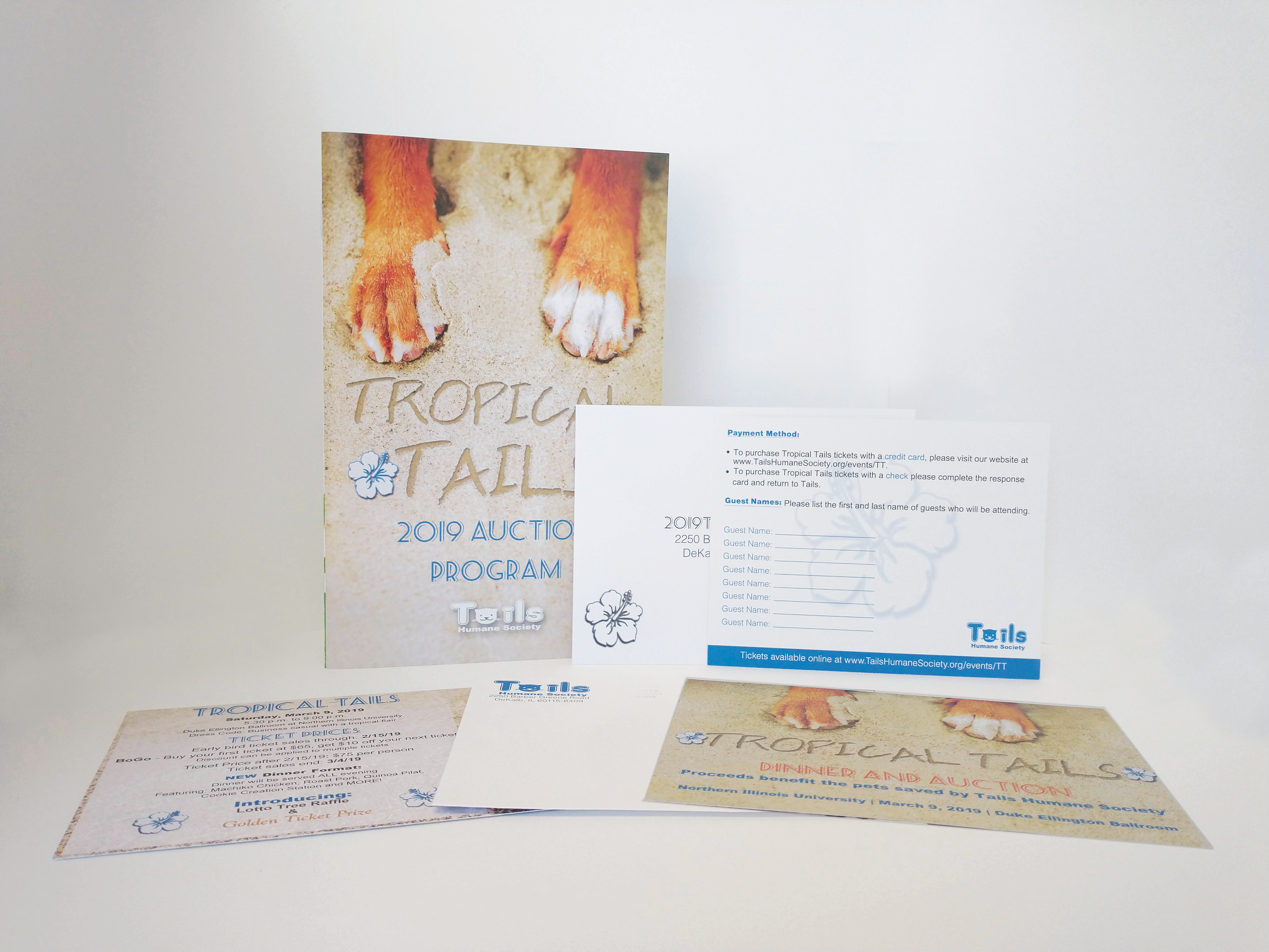 booklet with posters design